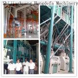Máquina 100t/24h do moinho de farinha do trigo