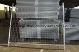 Gabbia provvisoria galvanizzata esterna del cane della rete fissa del TUFFO caldo