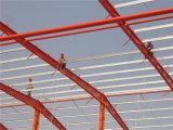 Oficina nova Plm-12 da construção de aço do painel de sanduíche do cimento do EPS