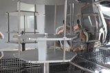 고무 케이블 ASTM D1149를 위한 검사자 250 리터 내오존성