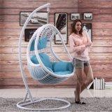 現代屋外の藤の振動ハングの卵のバスケットの椅子(D014B)