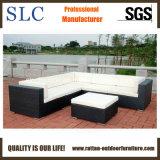 Sofà del rattan/sofà impostato/sofà della mobilia (SC-B9504)
