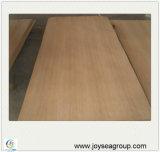 Quantité élevée concevant le panneau de Pywood de placage de chêne blanc