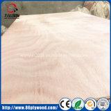 Hoja comercial de la caoba/de la madera contrachapada de Okoume con precio de fábrica