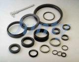 Bagues d'étanchéité au carbone graphite pour les machines avec la norme ISO 9001