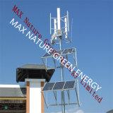 sistema híbrido vertical de los paneles solares de la turbina de viento 1000W +500W (2PCS)