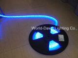 Tira de LED flexible de alto brillo con aprobación CE de 50 metros por el molinete