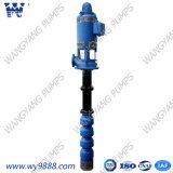 Long Shaft Pump Centrifugal Vertical Turbine Borehole Pump