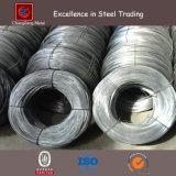 Collegare del ferro galvanizzato collegare dell'acciaio inossidabile SUS304 316 301 (CZ-W37)