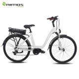 Billig! 2 kühles elektrisches MTB Gebirgsmittleres Laufwerk-elektrisches Fahrrad des Rad-