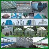 10 лет гарантии поликарбонат сплошной лист низкая цена хорошего качества