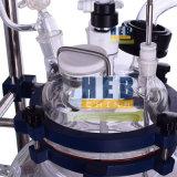Reactor de vidrio forrados (HB-10L)