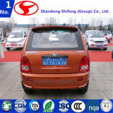 Автомобиль/корабль профессиональных цен Китая конструкции дешевых электрический