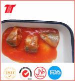 frische in Büchsen konservierte Sardinen 125g/155g/425g und Makrele-Thunfische