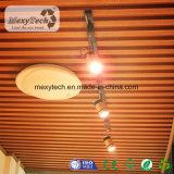Incêndio - teto interno de madeira retardador do PVC do composto WPC