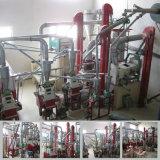 Завод маиса филируя от Китая