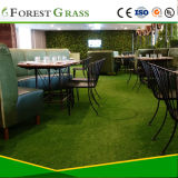 Het Garen die van Thiolon Kunstmatig Gras voor Werf (MSD) modelleren