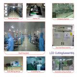 Module de TFT LCD de 8 pouces pour industriel/application médicale