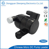 Mini pompe de bonne qualité de véhicule de C.C 12V pour la climatisation