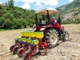 Ферма трактор 45HP (WD454)