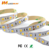 LM5050-WN60-12V fita LED