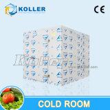 熱帯領域のための商業大きい容量の冷蔵室