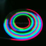 세륨, RoHS 증명서 네온 코드 밧줄 빛 원격 제어 다채로운 LED 네온 등