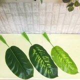 Piante e fiori artificiali dei fogli della banana di Gu-Yd902_152039