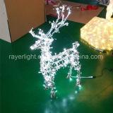 Luzes de esquilo LED decoração doméstica de Natal Natal Store
