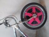 "20"" nova Gril MTB Bike"