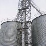 Большое силосохранилище для пользы деревянной щепки в линии лепешки