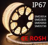 220V IP67 imperméabilisent la lumière de bande du certificat DEL de la CE