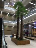 Искусственные растения и цветы Коко Палм 6m Gu-SL1105094232