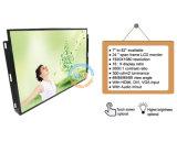 Estrutura aberta de 24 polegadas, Monitor LCD com botões de menu (MW-241ME)