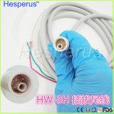 Tubazione staccabile di Handpiece Hw-3h del picchio originale