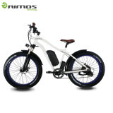 500W 1000Wの電気バイクモーターFatboy Ebike OEM山Eのバイク