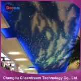 Indicatori luminosi di soffitto ottici decorativi della stella della fibra del LED