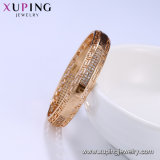 51858 Armband van de Vrouwen van de Juwelen van de manier de Verguld Mooie