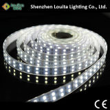 5m CC12V Tube Wateproof 5050SMD LED/120M de doble hilera TIRA DE LEDS