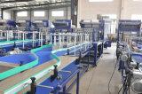 De volledig Automatische Lijn van het Flessenvullen van het Sap van het Roestvrij staal Kleine