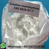 Il monoidrato della creatina di purezza di 99% per nutrizione completa il rifornimento della fabbrica 6020-87-7