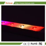 Keisue 26W 높은 Effiency LED는 플랜트 공장을%s 가볍게 증가한다
