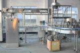 Полностью автоматическая регулировка малых из нержавеющей стали линии наполнения бачка сока
