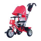 De kinderen berijden op Stuk speelgoed 4 in 1 Wandelwagen Met drie wielen van Jonge geitjes