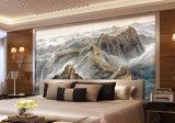 De hete Verkopende Waterdichte het Schilderen van de Decoratie van het Behang Chinese Muurschildering Van uitstekende kwaliteit van de Muur