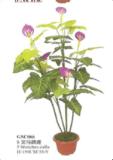 인공적인 식물 (GSC066)