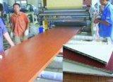 Le WPC/PVC mousse Celuka croûte Conseil Ligne de Production