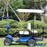 Carro Sightseeing resistente do assento dobro com suspensão dianteira e motor de 36V 1600W