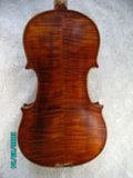 Violino (JAV005)
