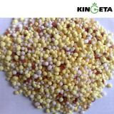 Fertilizante de mistura NPK Quanlity do volume elevado de Kingeta